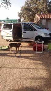 Campingplatz in Spanien